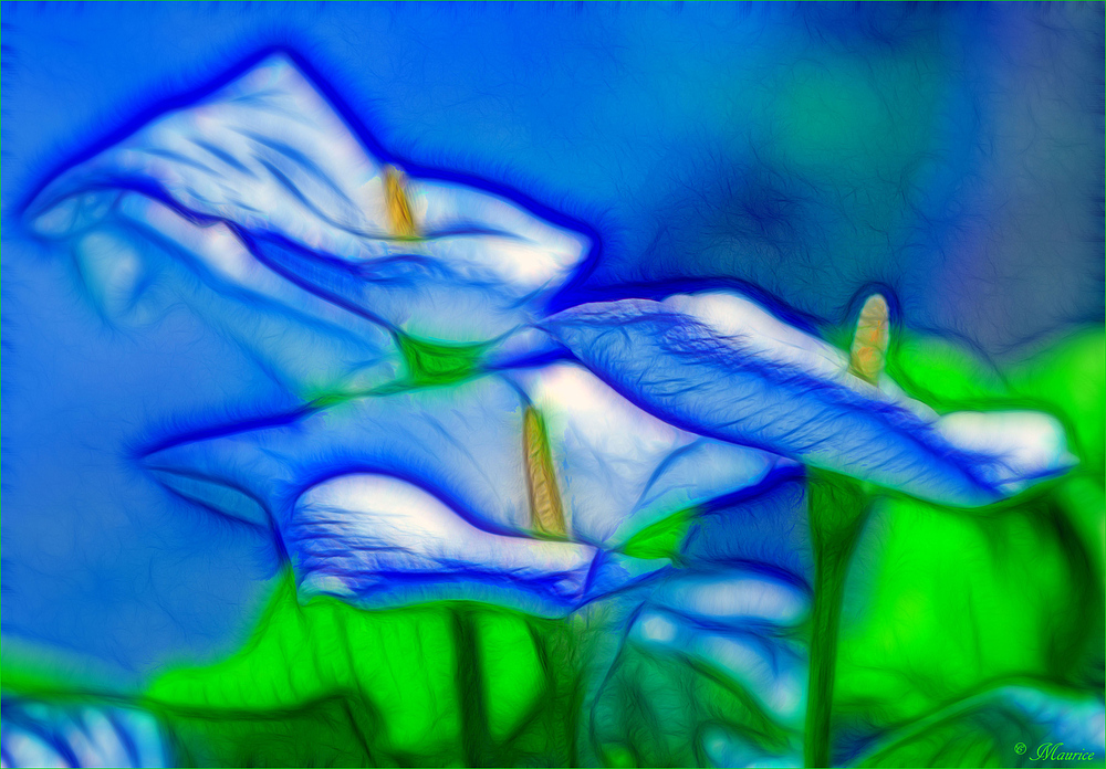 * GREEN - BLUE *