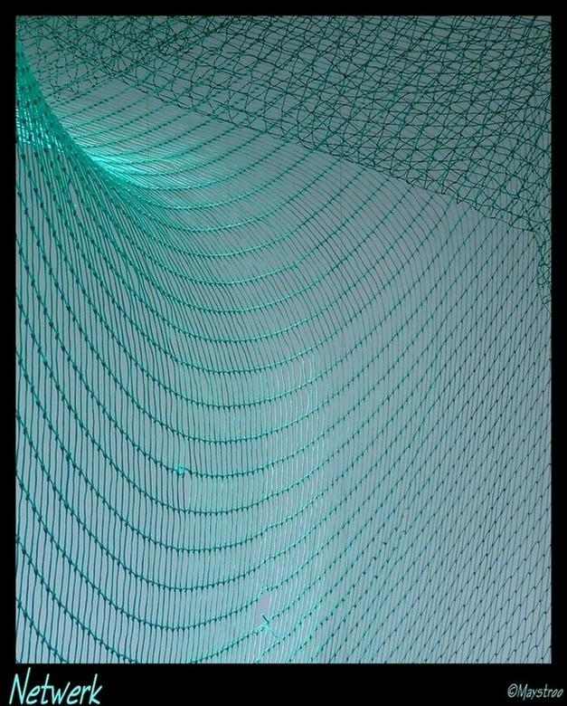 green fishnet