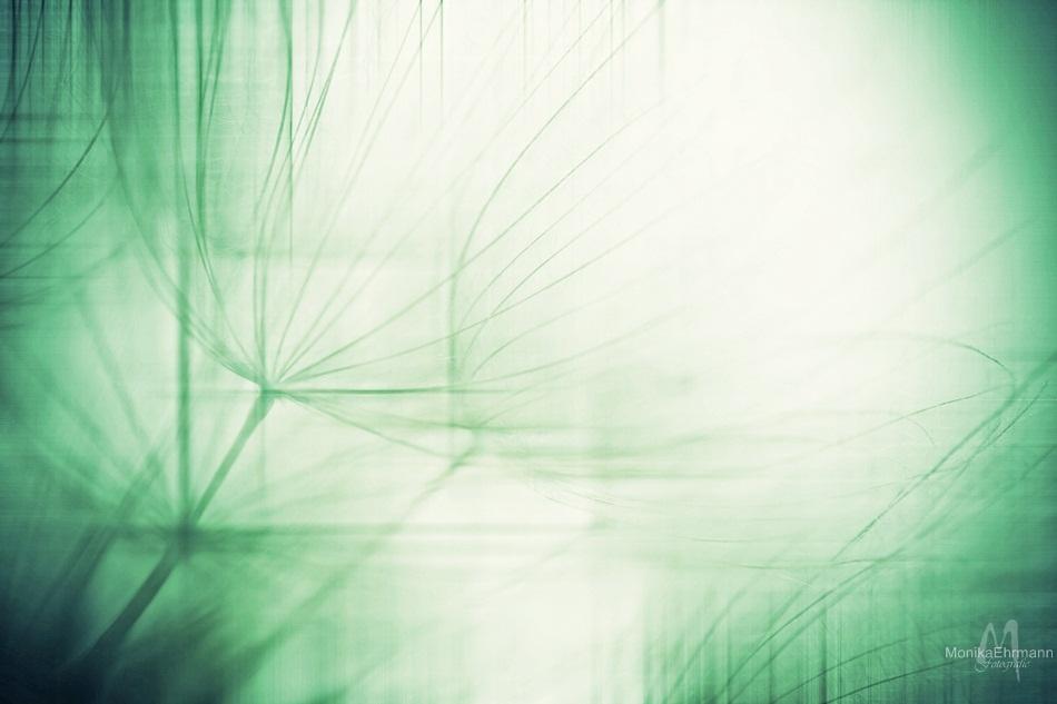 .green fog.