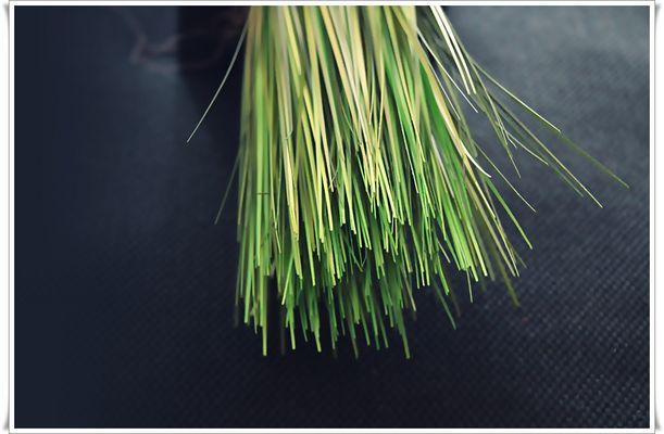 GREEN GRAS......