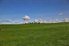Green gras, blue sky ...