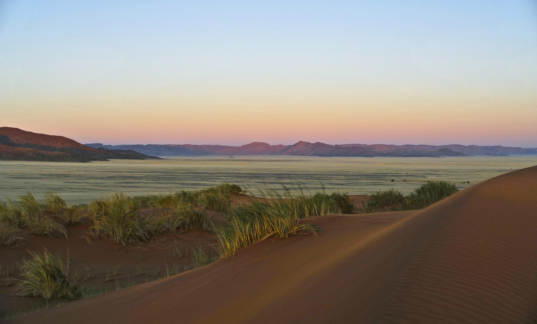 Green Namib Desert