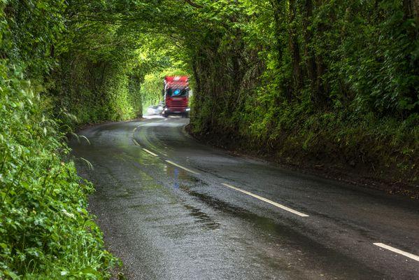 *green tunnel*