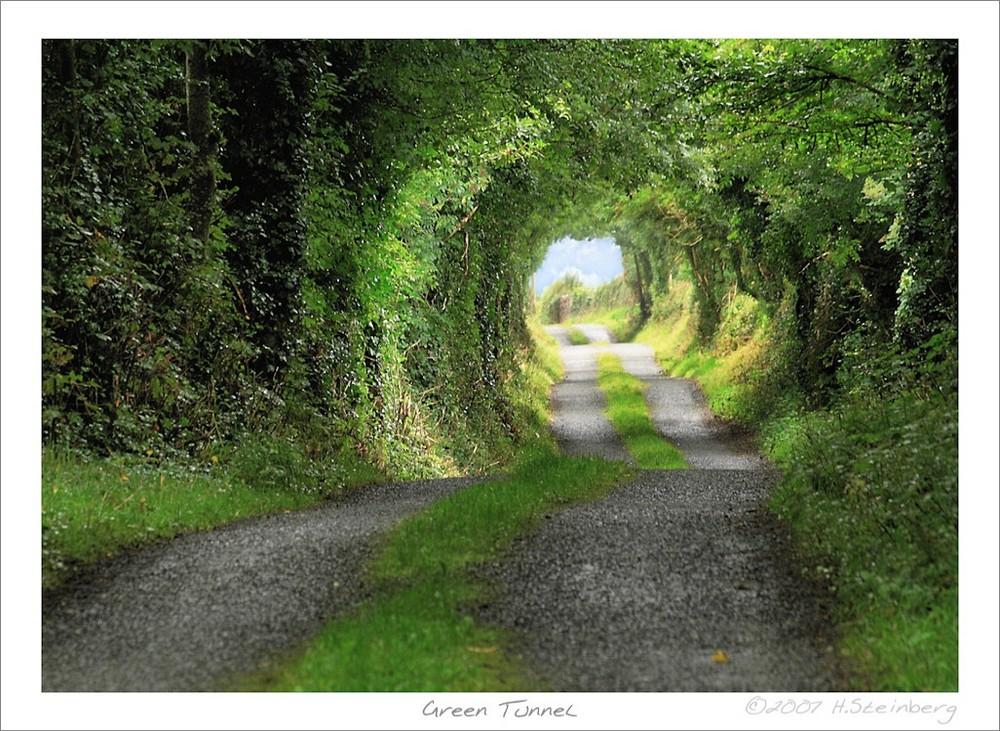 Green Tunnel (Grüner Tunnel)