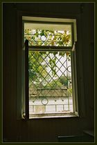 Green window bars
