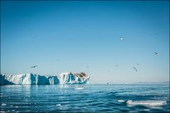 Greenland #14