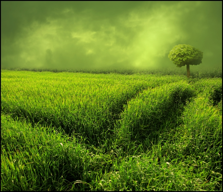 green.land