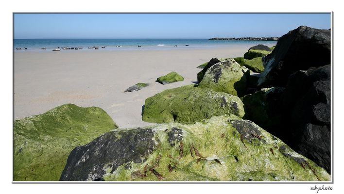Greenstone Beach