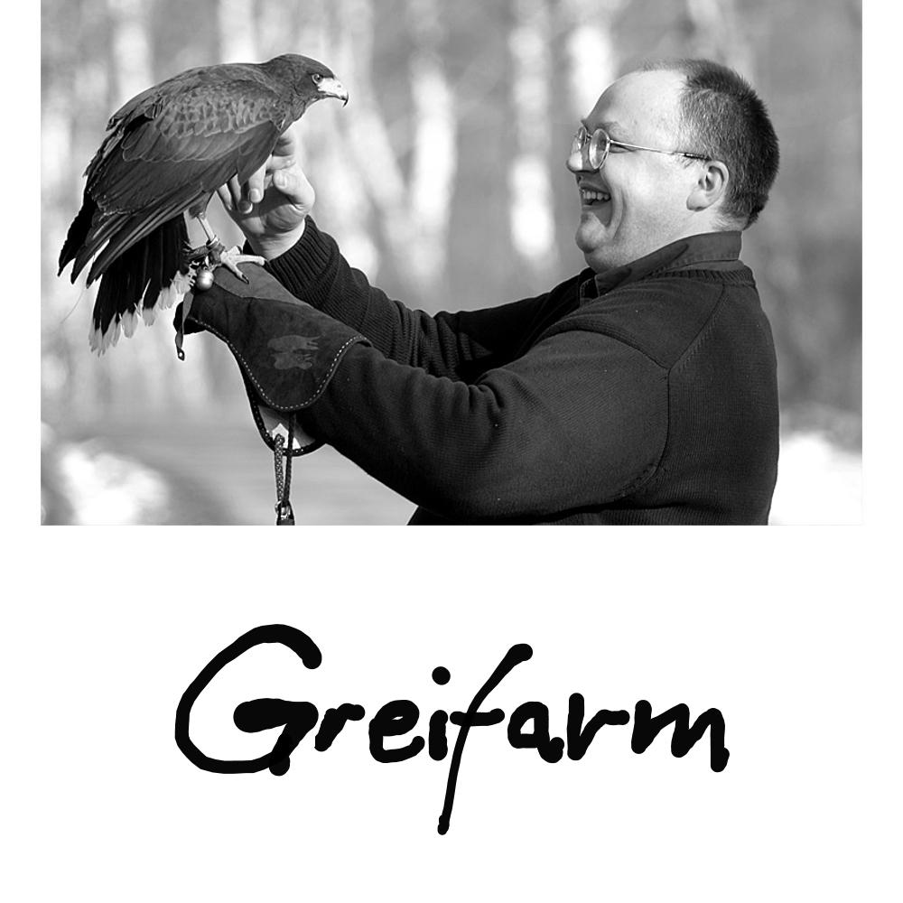 Greifarm - ebenfalls plagiierte Lösung