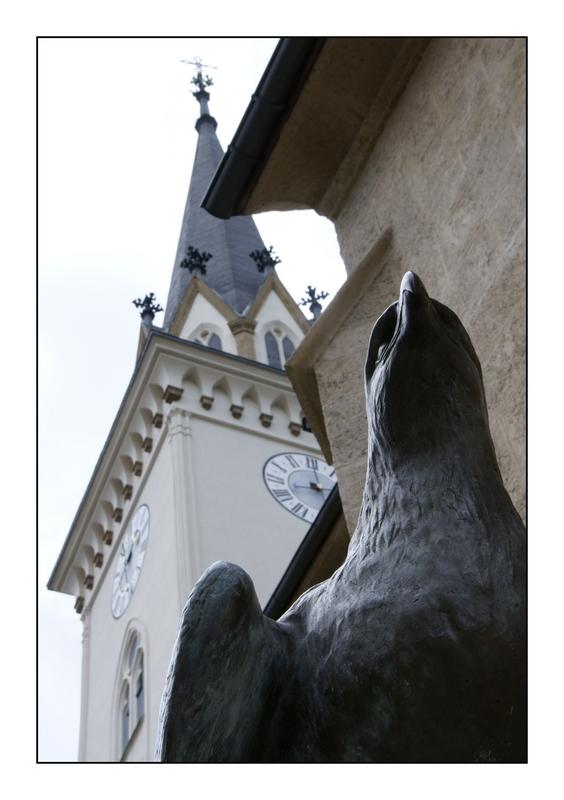 Greifvogel vor Kirche