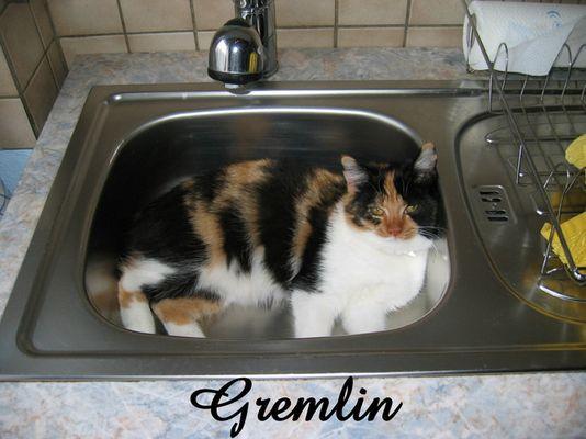 Gremimaus