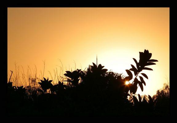 Grenzenloser Sonnenaufgang