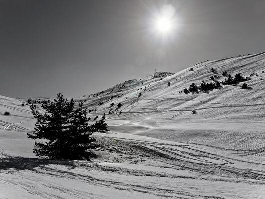 Gréolières les neiges B&W - 2