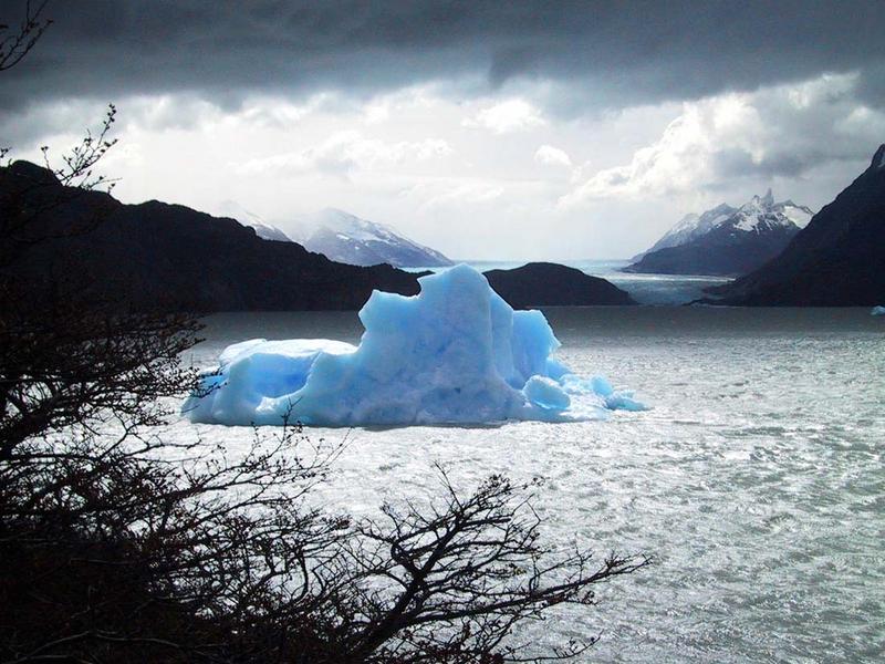 Grey- Gletscher- südliches Eisfeld