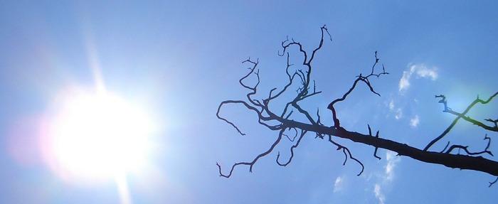 Griff zur Sonne