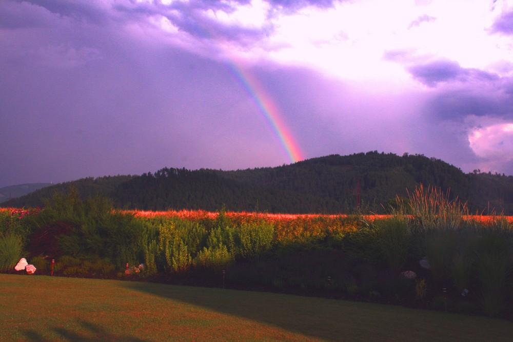 Griffner Regenbogen