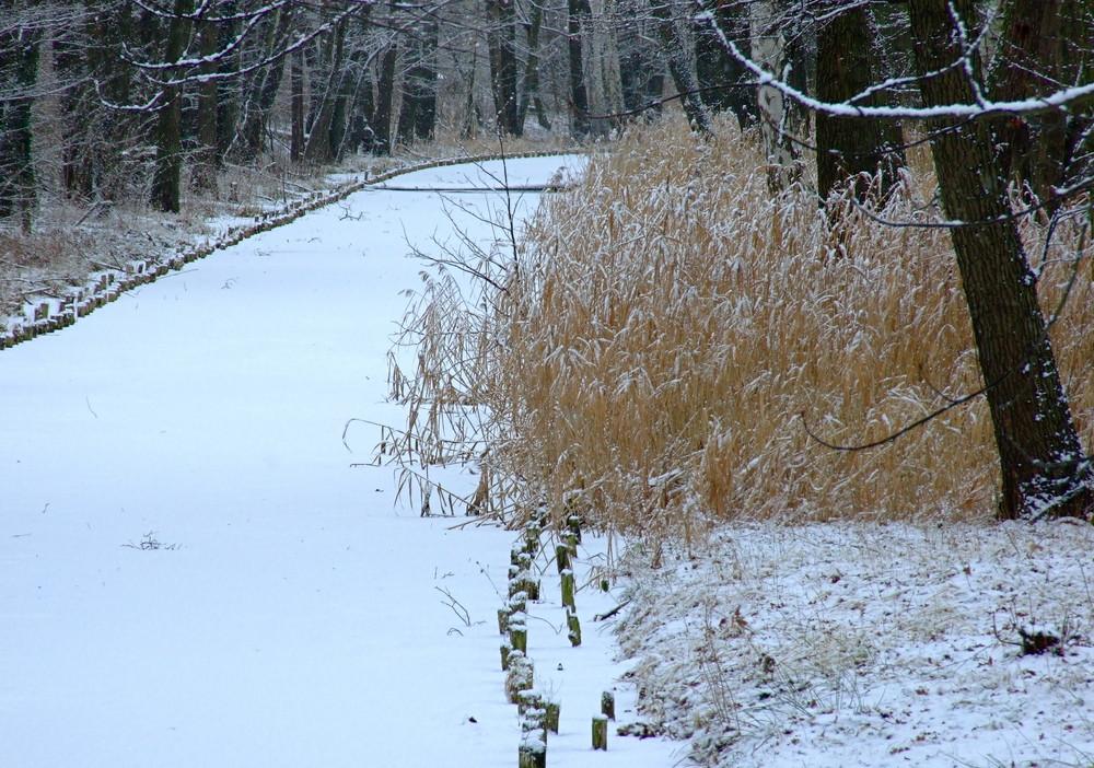 Grödel-Elsterwerdaer Floßkanal °°° Heute noch einmal in weiß gekleidet.