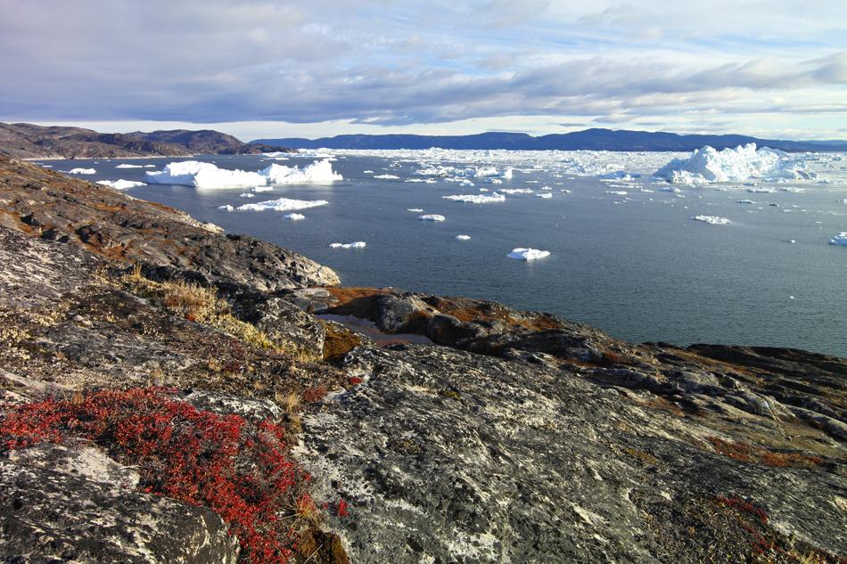 "Grönland ""Blick in den Eisfjord"" FVR 2012"