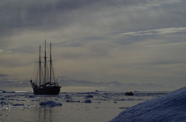 Grönland, Disko Bucht 2