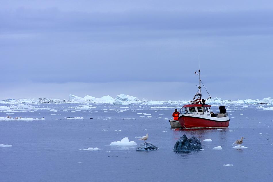 """Grönland """"Sonntag auf dem Eismeer"""" FVR 2012"""