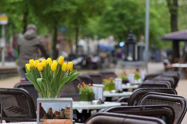 Groningen ....