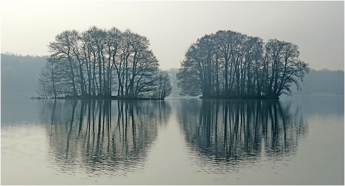 Groß Glienicker See im Nebel