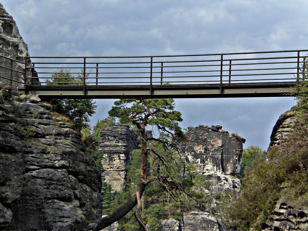 Große Wehrgangsbrücke aus dem Burghof