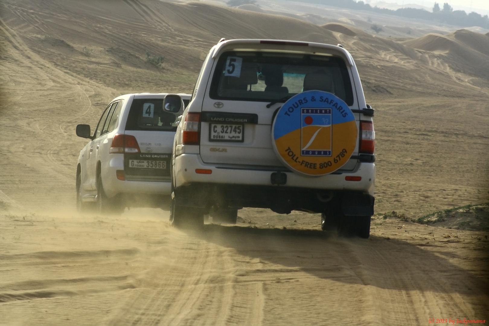 Große Wüstensafari durch die Wüste in Dubai (2)
