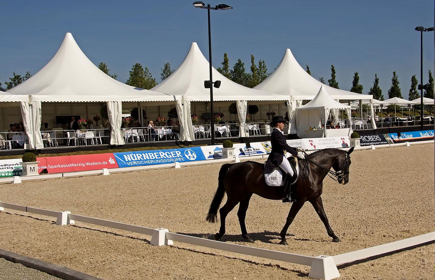 Großen Pferdesport, ....