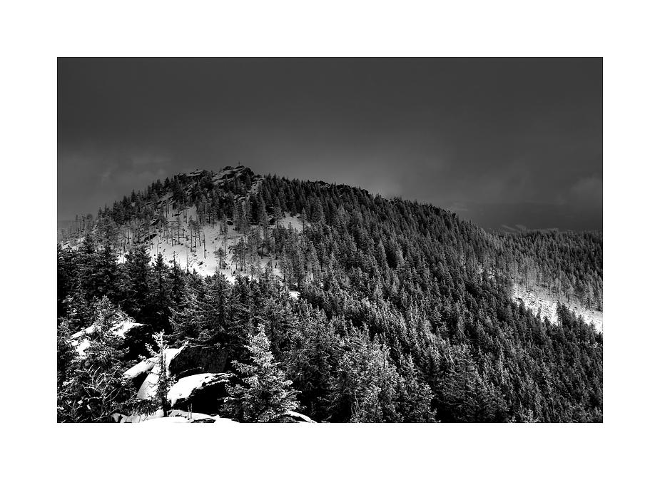 Grosser Osser - 1293 m