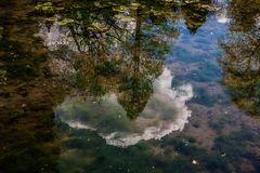 Großer Teich im ..