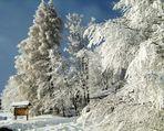 grosses chutes de neige