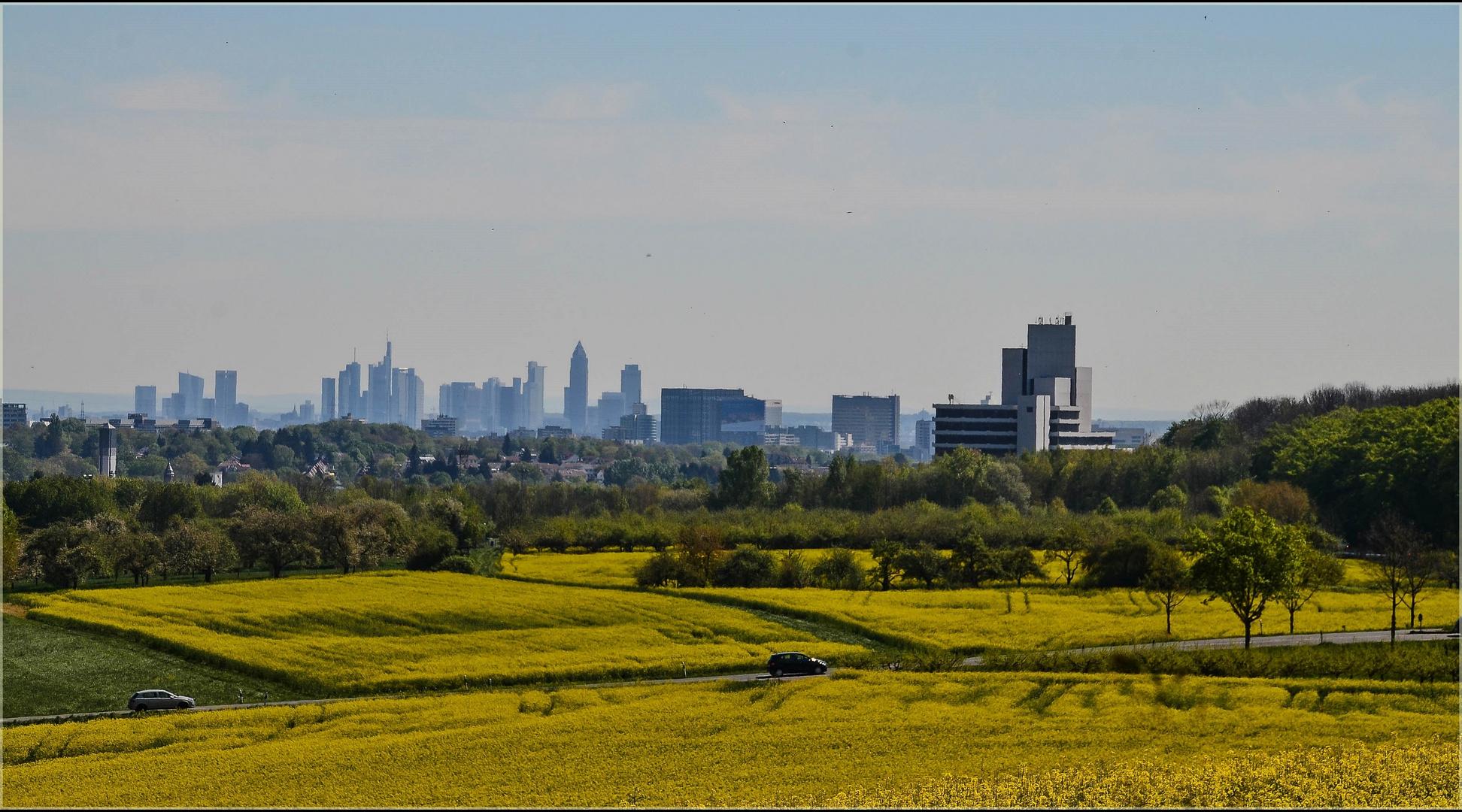 Großstadt in der Nähe und trotzdem im Grünen, ...