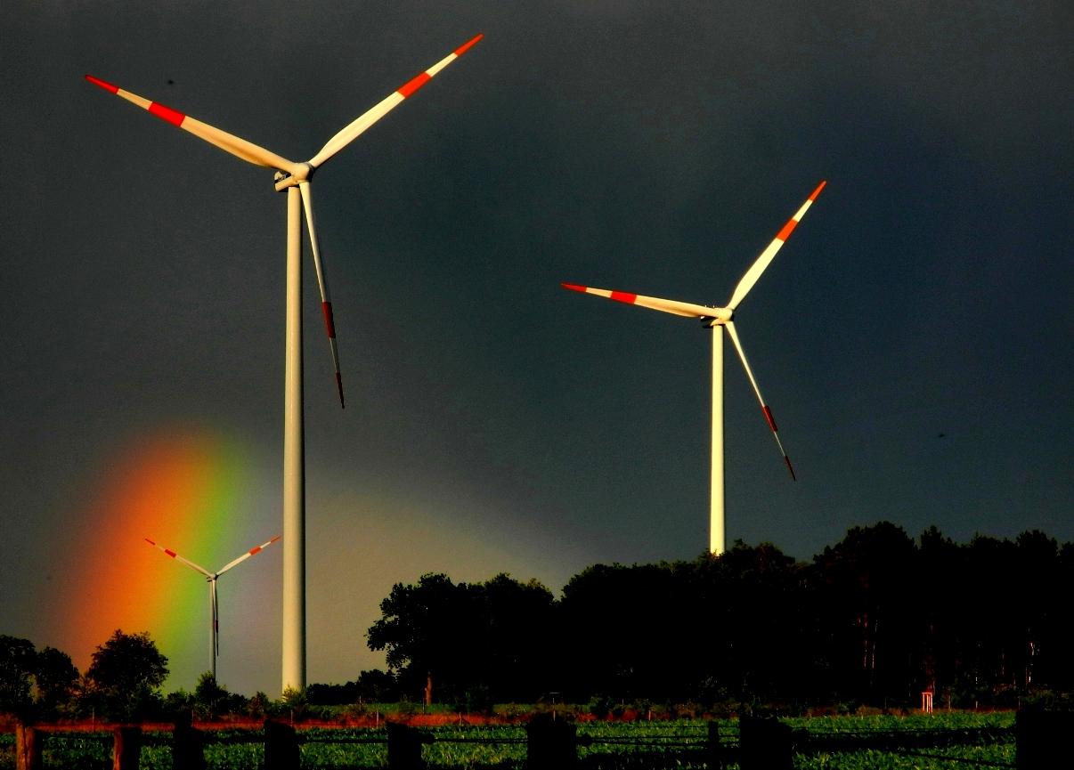 Growian against Rainbow ...