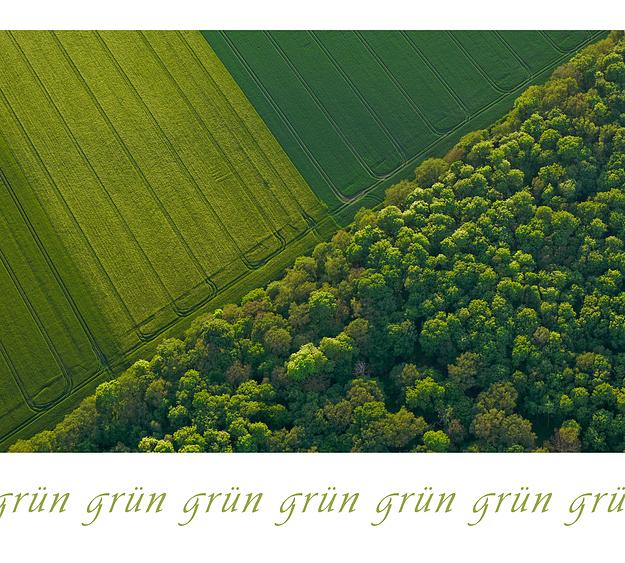 ...grün...