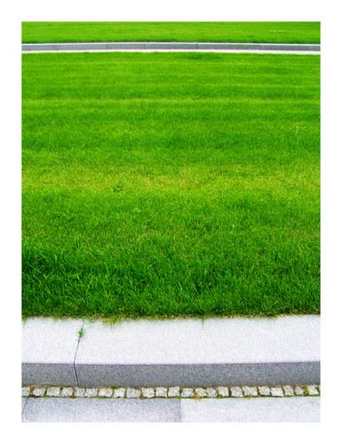 grün. fläche. (1)