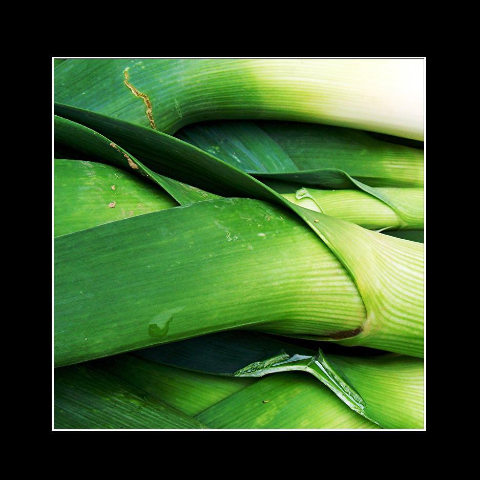 grün-gelb-weiß