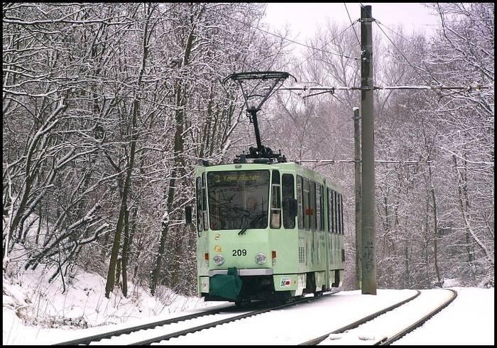 Grün in Weiß