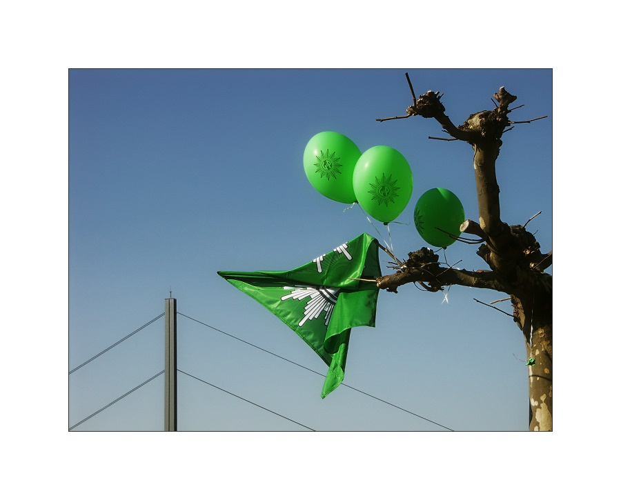 """""""Grün ist..."""""""