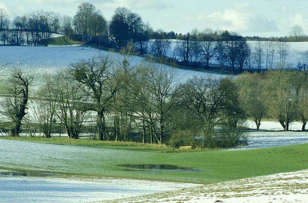 Grün und Blau vor Schnee