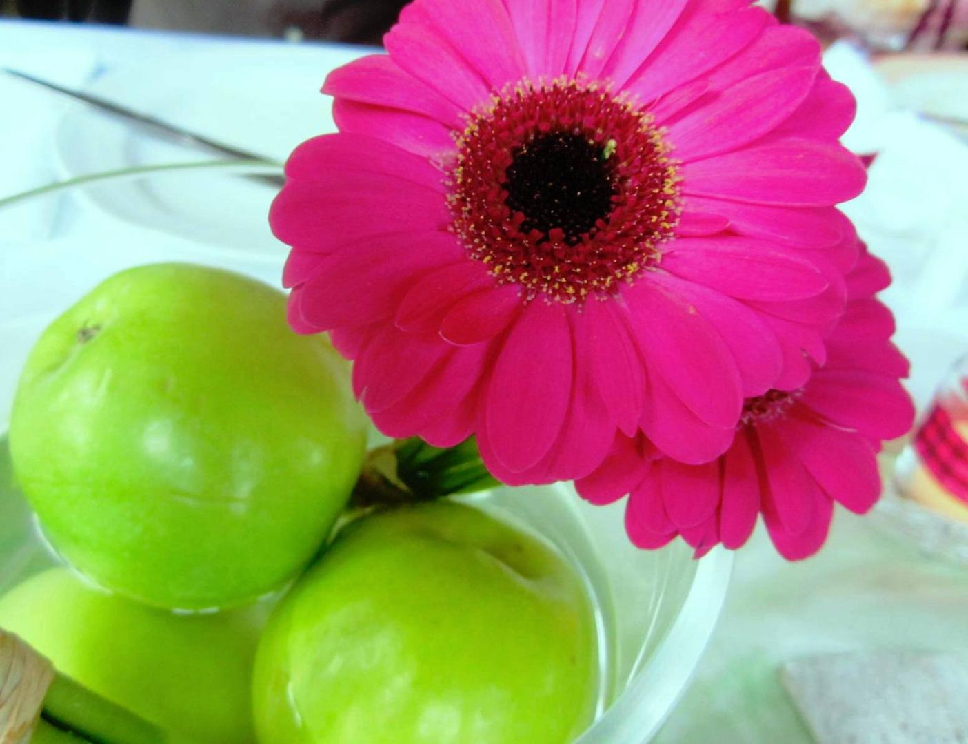grün und pink