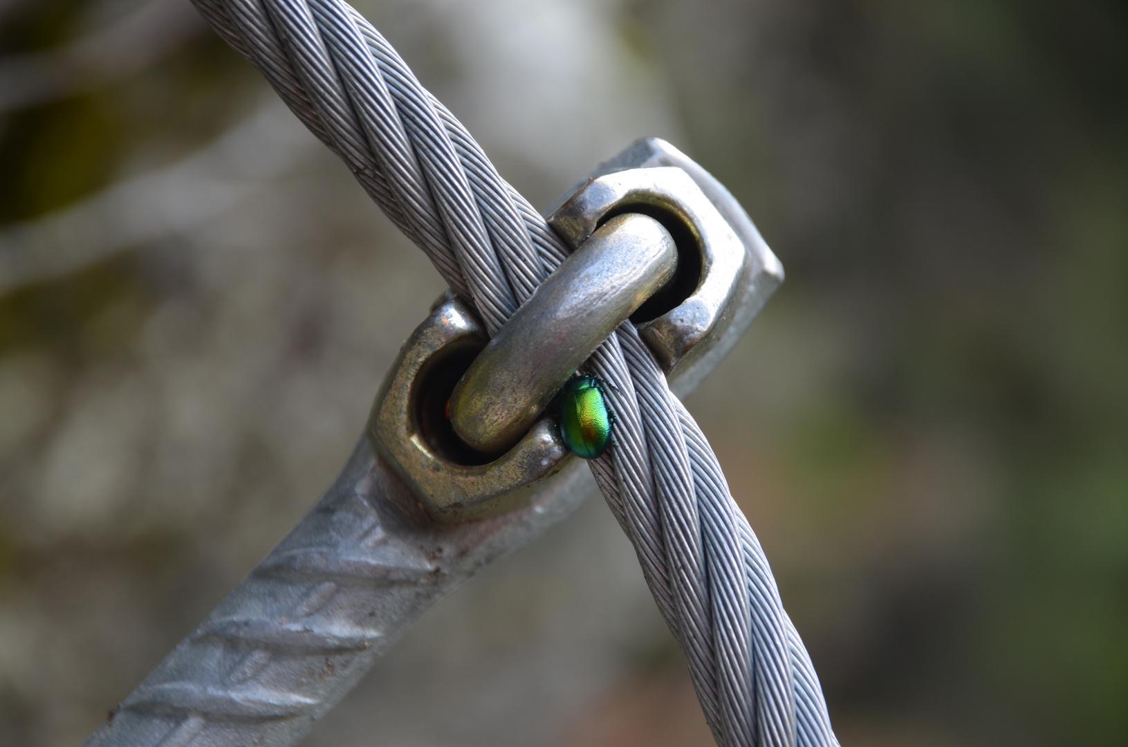 Grün und Silber