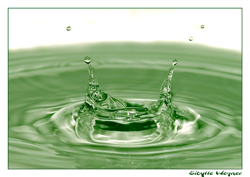 Grüne Doppelspitze