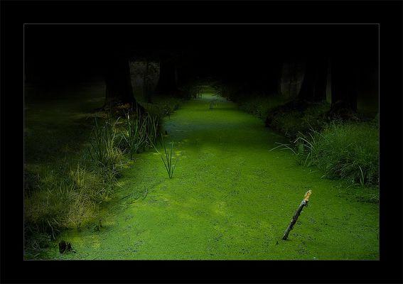 Grüne Hölle