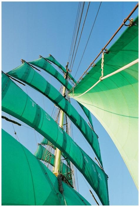 Grüne Segel