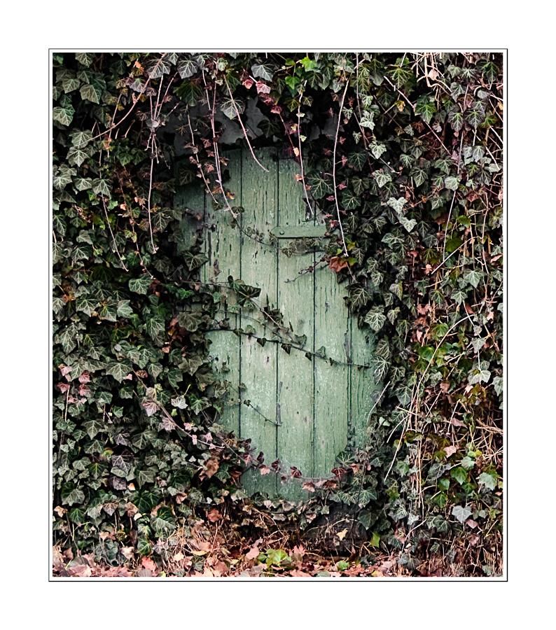 Grüne Tür extrem