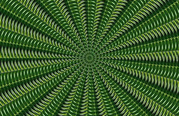 GrüneFreiheit