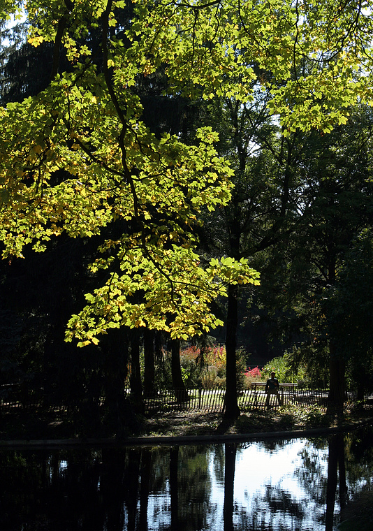 Grüner Oktober