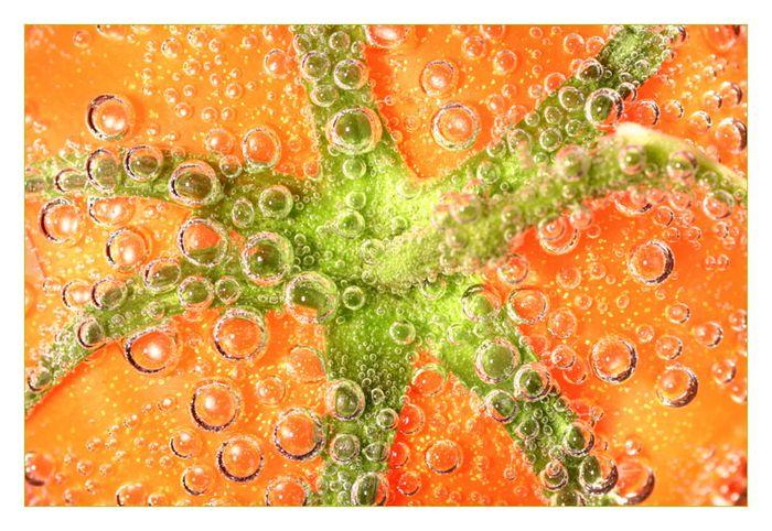 Grüner Stern