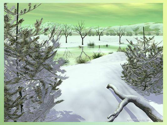 """""""grüner Winter"""""""